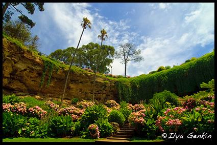Umpherston Sinkhole, Cave Gardens, Маунт Гембер, Mount Gambier, Южная Австралия, South Australia, Австралия Australia