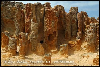 Петрифайд Форест, Petrified Forest, Великая Океанская Дорога, Great Ocean Road, Victoria, Australia