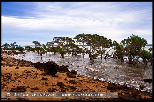 Тенби Поинт, Tenby Point, Виктория, Victoria, VIC, Австралия, Australia