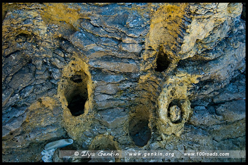 Петрифайд-Форест, Окаменелый лес, Petrified Forest, Point Tinline, Остров Кенгуру, Kangaroo Island, Южная Australia, South Australia, Австралия, Australia