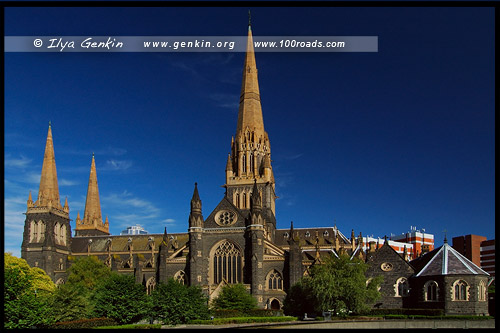 Собор Святого Патрика, St Patrick's Catholic Cathedral, Мельбурн, Melbourne, Австралия, Australia