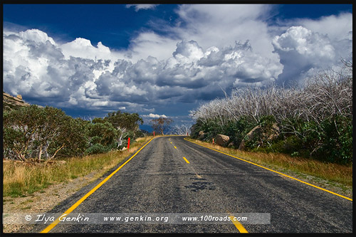 Национальный парк Горы Баффало, Mt Buffalo NP, Виктория, Victoria, Австралия, Australia