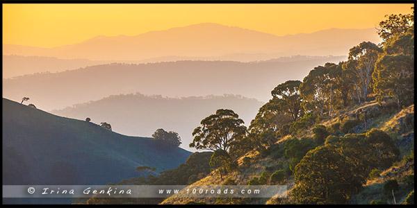 Парк Баррингтон Топс, Barrington Tops NP, Новый Южный Уэльс, NSW, Австралия, Australia