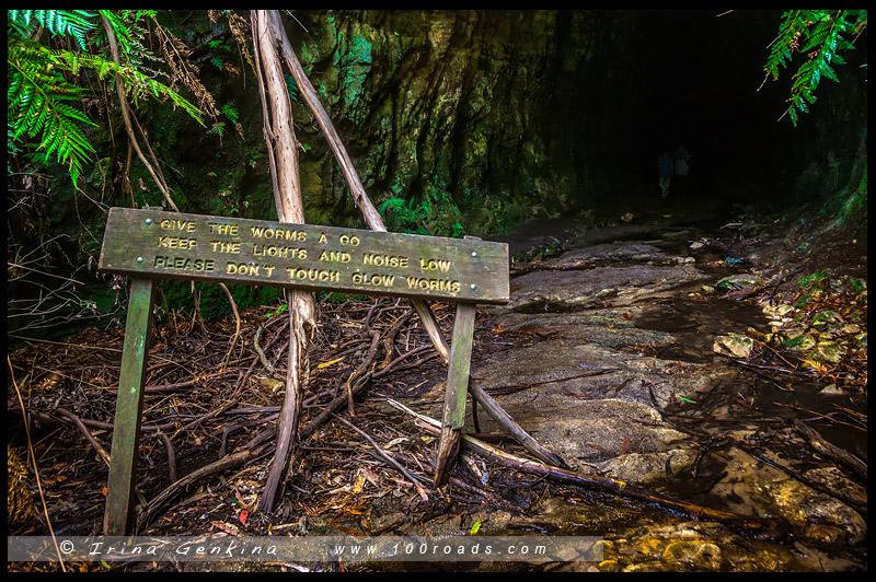 Туннель светлячков, Glow Worm Tunnel, Голубые Горы, Blue Mountains, Австралия, Australia
