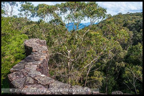 Сады Эверглейдс, Everglades Gardens, Леура, Льюра, Leura, Голубые Горы, Blue Mountains, Новый Южный Уэльс, NSW, Австралия, Australia