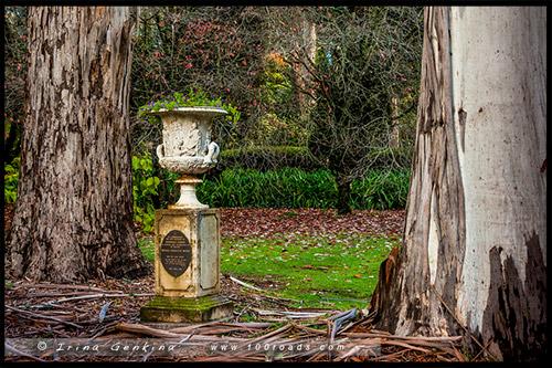 Владение Бринов, Breenhold, Гора Вилсон, Mount Wilson, Голубые Горы, Blue Mountains, Новый Южный Уэльс, NSW, Австралия, Australia