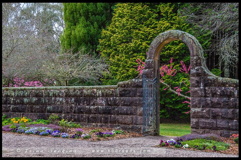 Mt Wilson Spring Blossom Festival, Владение Бринов, Breenhold, Гора Вилсон, Mount Wilson, Голубые Горы, Blue Mountains, Новый Южный Уэльс, NSW, Австралия, Australia