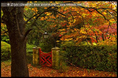 <Калитка в сад Bebeah, Bebeah Garden, Гора Вилсон, Mount Wilson, Голубые Горы, Blue Mountains, Новый Южный Уэльс, NSW, Австралия, Australia