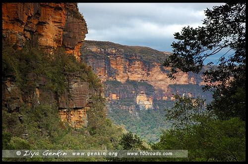 <Долина Вод, The Valley of the Waters, Водопады Вентворт, Вентворт Фолс, Wentworth Falls, Голубые Горы, Blue Mountains, Новый Южный Уэльс, NSW, Австралия, Australia