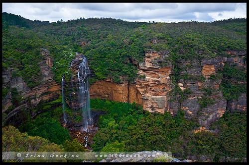 <Водопад Вентворт, Вентворт Фолс, Wentworth Falls, Голубые Горы, Blue Mountains, Новый Южный Уэльс, NSW, Австралия, Australia