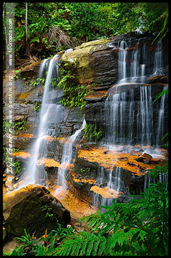 <Водопад Плоская скала, Flat Rock Falls, Долина Вод, The Valley of the Waters, Водопады Вентворт, Вентворт Фолс, Wentworth Falls, Голубые Горы, Blue Mountains, Новый Южный Уэльс, NSW, Австралия, Australia