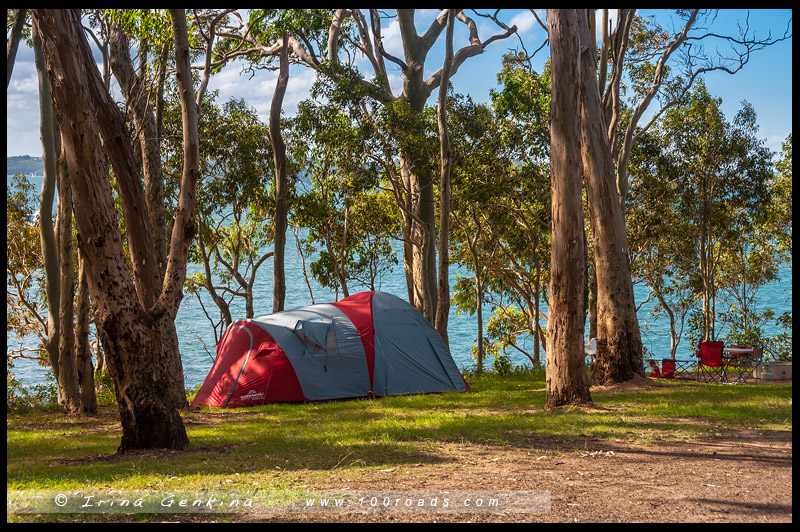 Озеро Маккуори, Lake Macquarie, Новый Южный Уэльс, New South Wales, Австралия, Australia