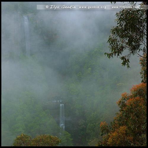 <Водопад Белмор, Белмор Фолс, Belmore Falls, Национальный парк Мортон, Morton National Park, Новый Южный Уэльс, NSW, Австралия, Australia