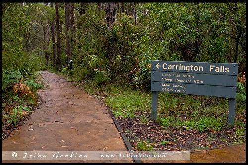 <Водопад Каррингтон, Каррингтон Фолс, Carrington Falls, Национальный парк Баддеру, Budderoo National Park, Новый Южный Уэльс, NSW, Австралия, Australia