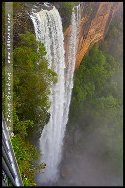 <Водопад Фицрой, Fitzroy Falls, Национальный парк Мортон, Morton National Park, Новый Южный Уэльс, NSW, Австралия, Australia