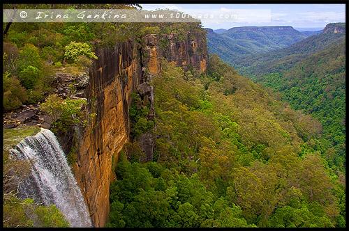 <Водопад Фицрой, Fitzroy Falls, Долина Ярранга, Yarrunga Valley, Национальный парк Мортон, Morton National Park, Новый Южный Уэльс, NSW, Австралия, Australia