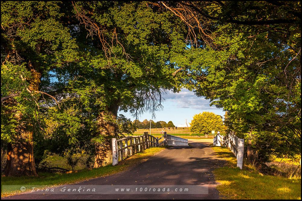 Старый мост, Old Bridge, Гоствика Gostwyck, Новая Англия, New England, Новый Южный Уэльс, New South Wales, NSW, Австралия, Australia