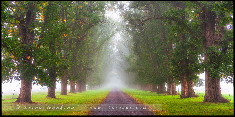 Часовня Гоствика, Gostwyck Chapel, Новая Англия, New England, Новый Южный Уэльс, New South Wales, NSW, Австралия, Australia
