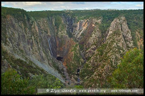 Водопад Волломомби, Wollomombi Falls, Национальный Парк Дориго, Dorrigo National Park, Новая Англия, New England, Новый Южный Уэльс, New South Wales, NSW, Австралия, Australia