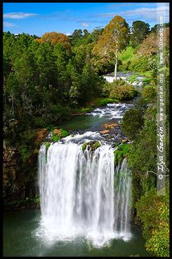 Водопад Дангар, Dangar Falls, Дорога водопадов, Waterfall Way, Новая Англия, New England, Новый Южный Уэльс, New South Wales, NSW, Австралия, Australia