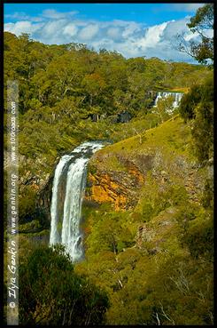 Водопады Эбор, Ebor Falls, Дорога водопадов, Waterfall Way, Новая Англия, New England, Новый Южный Уэльс, New South Wales, NSW, Австралия, Australia