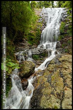 Tristania Falls, Национальный Парк Дорриго, Dorrigo National Park, Новая Англия, New England, Новый Южный Уэльс, New South Wales, NSW, Австралия, Australia