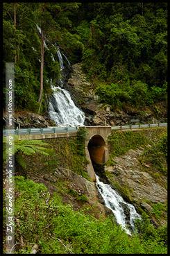 Водопад Ньюэлл, Newell Falls, Дорога водопадов, Waterfall Way, Новая Англия, New England, Новый Южный Уэльс, New South Wales, NSW, Австралия, Australia