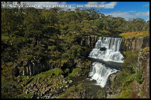 Водопад верхний Эбор, Upper Ebor Falls, Дорога водопадов, Waterfall Way, Новая Англия, New England, Новый Южный Уэльс, New South Wales, NSW, Австралия, Australia
