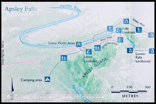Схема треков, Водопад Апслей, Apsley Falls, Валча, Walcha, Новая Англия, New England, Новый Южный Уэльс, New South Wales, NSW, Австралия, Australia