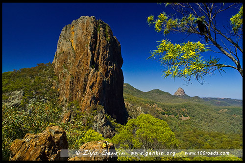 Национальный Парк Варрамбангл, Warrumbungle NP, Новый Южный Уэльс, New South Wales, NSW, Австралия, Australia
