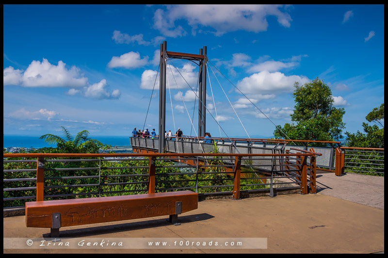 Sealy Lookout Forest Sky Pier, Кофс-Харбор, Coffs Harbour, Новый Южный Уэльс, New South Wales, Австралия, Australia