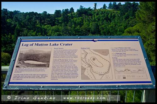 Озеро Баранья нога, Leg of Mutton Lake, Маунт Гембер, Mount Gambier, Южная Австралия, South Australia, SA, Австралия, Australia
