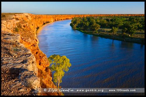 Большой изгиб Мюррея, Мюррей, Murray, Южная Австралия, South Australia, SA, Австралия, Australia