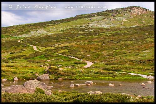 Снежная речка, Snowy River, Национальный Парк Костюшко, Kosciuszko National Park, Снежные Горы, Snowy Mountains, Новый Южный Уэльс, New South Wales, NSW, Австралия, Australia