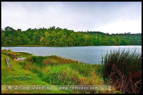 Озеро Баррин, Lake Barrine, Плато Атертон, Atherton Tableland, Queensland, Квинсленд, QLD, Австралия, Australia