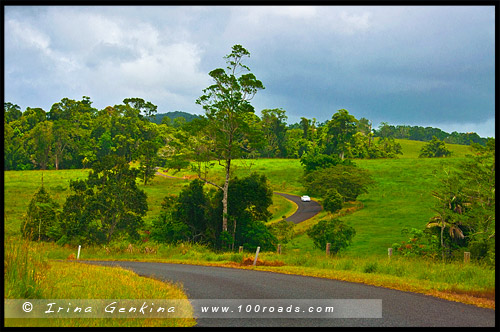 Плато Атертон, Atherton Tableland, Queensland, Квинсленд, QLD, Австралия, Australia