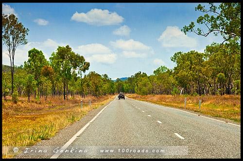Трасса Кенеди, Kennedy Hwy, Queensland, Квинсленд, QLD, Австралия, Australia