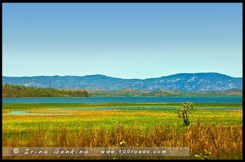 Озеро Митчелл, Lake Mitchell, Queensland, Квинсленд, QLD, Австралия, Australia