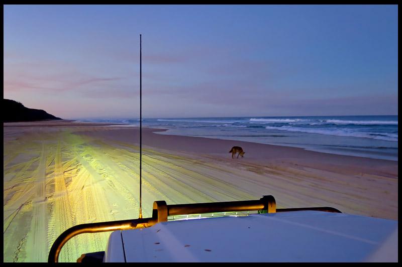 Остров Фрейзер, Fraser Island, Квинсленд, Queensland, Австралия, Australia