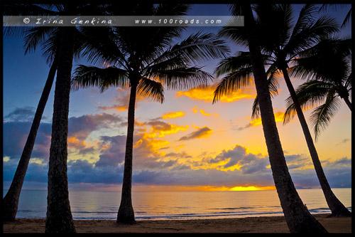 Рассвет, Пальмовая Бухта, Palm Cove, Cairns, Queensland, Квинсленд, QLD, Австралия, Australia
