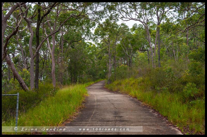 Обзорная площадка, Wild Horse Mountain Lookout, Национальный парк Горы Гласс-Хаус, Glasshouse Mountains National Park, Квинсленд, Queensland, Австралия, Australia