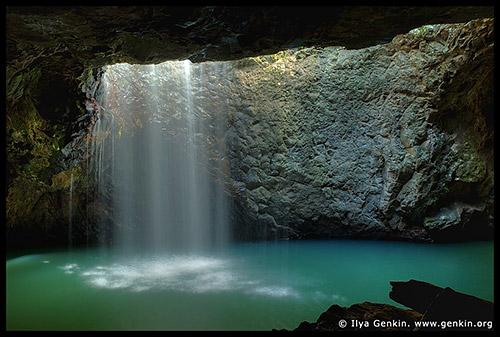Национальный парк Спрингбрук, Springbrook National Park, Золотое побережье, Gold Coast, Квинсленд, Queensland, Австралия, Australia