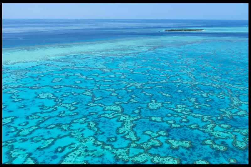 Остров Херон, Heron Island, Квинсленд, Queensland, Австралия, Australia
