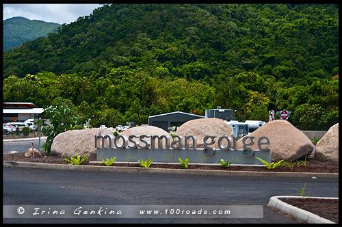 Стоянка у туристического центра, Ущелье Моссман, Mossman Gorge, Queensland, Квинсленд, QLD, Австралия, Australia