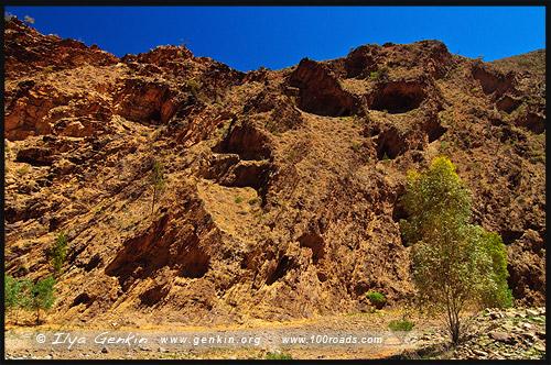 Священный каньон, Sacred Canyon, Северная цепь гор Флиндерс, Northern Flinders Ranges, Аутбек, Аутбэк, Outback, Южная Australia, South Australia, Австралия, Australia
