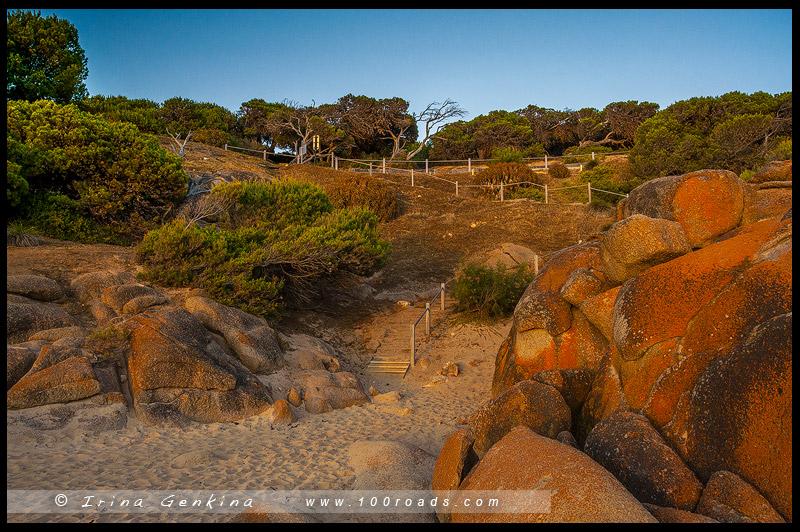Freemas Knob, Порт Эллиот, Port Elliot, Южная Австралия, South Australia, Австралия, Australia