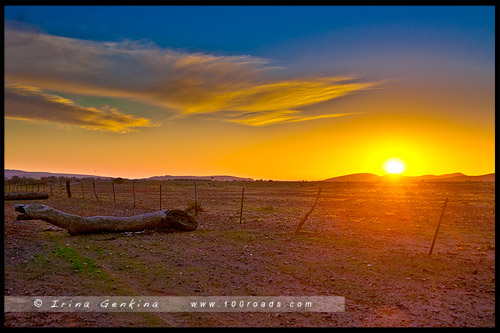 Национальный Парк Хребета Флиндес, Flinders Ranges NP, Северная цепь гор Флиндерс, Northern Flinders Ranges, Южная Австралия, South Australia, Австралия, Australia