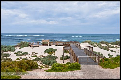 Бухта Тюленей, Seal Bay, Остров Кенгуру, Kangaroo Island, Южная Австралия, South Australia, Австралия, Australia