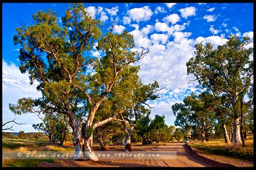 Южная Австралия, South Australia, Австралия, Australia
