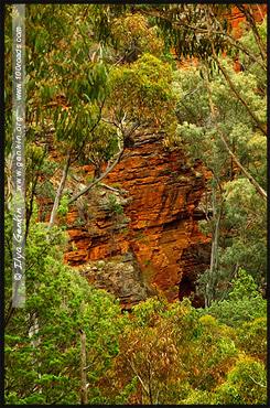 Вид с Gorge lookout, Ущелье Аллигатора, Alligator Gorge, Маунт Ремаркабл, Mt Remarkable, Южная Australia, South Australia, Австралия, Australia